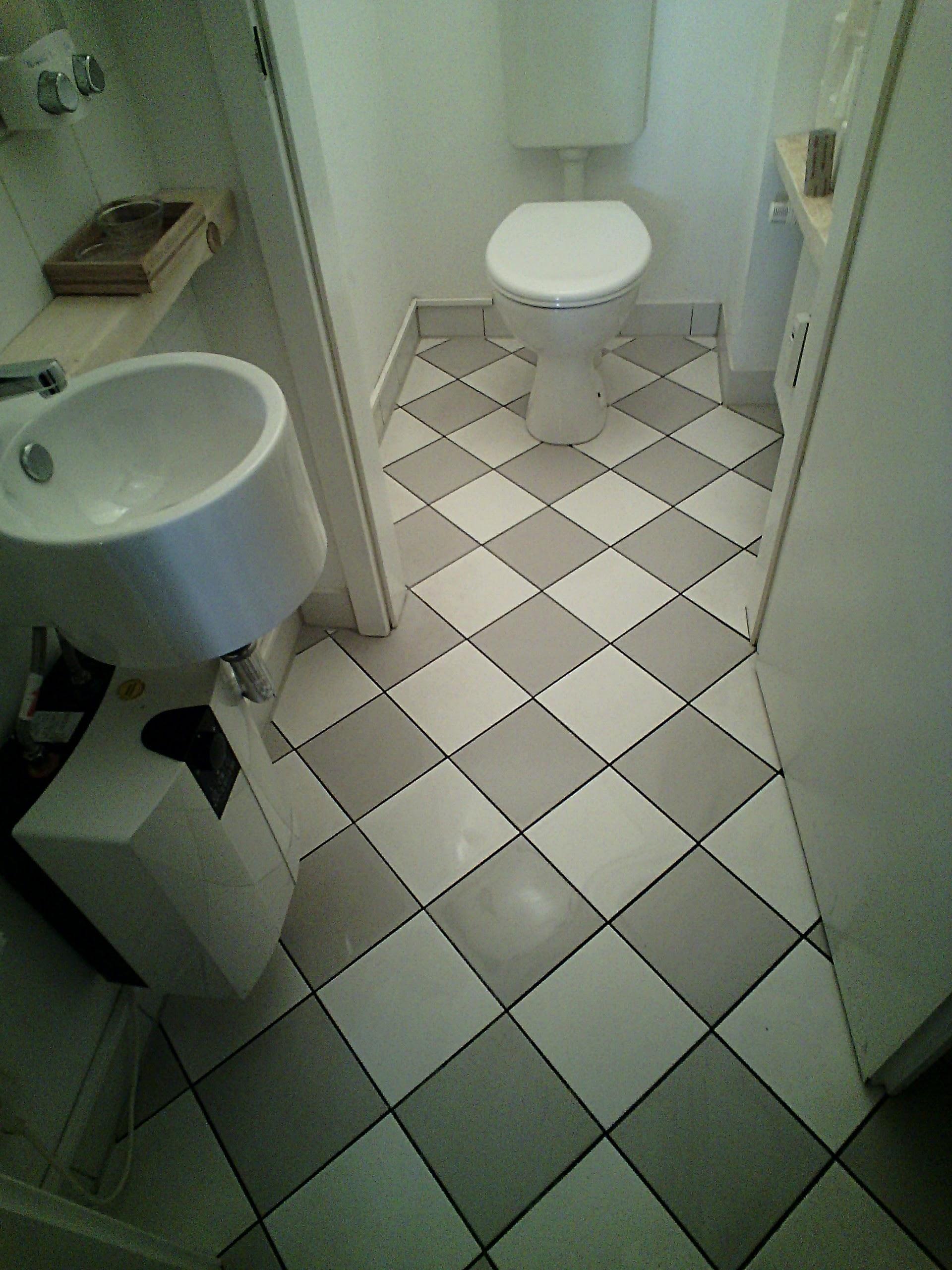 Toilette Carofliesen sauber