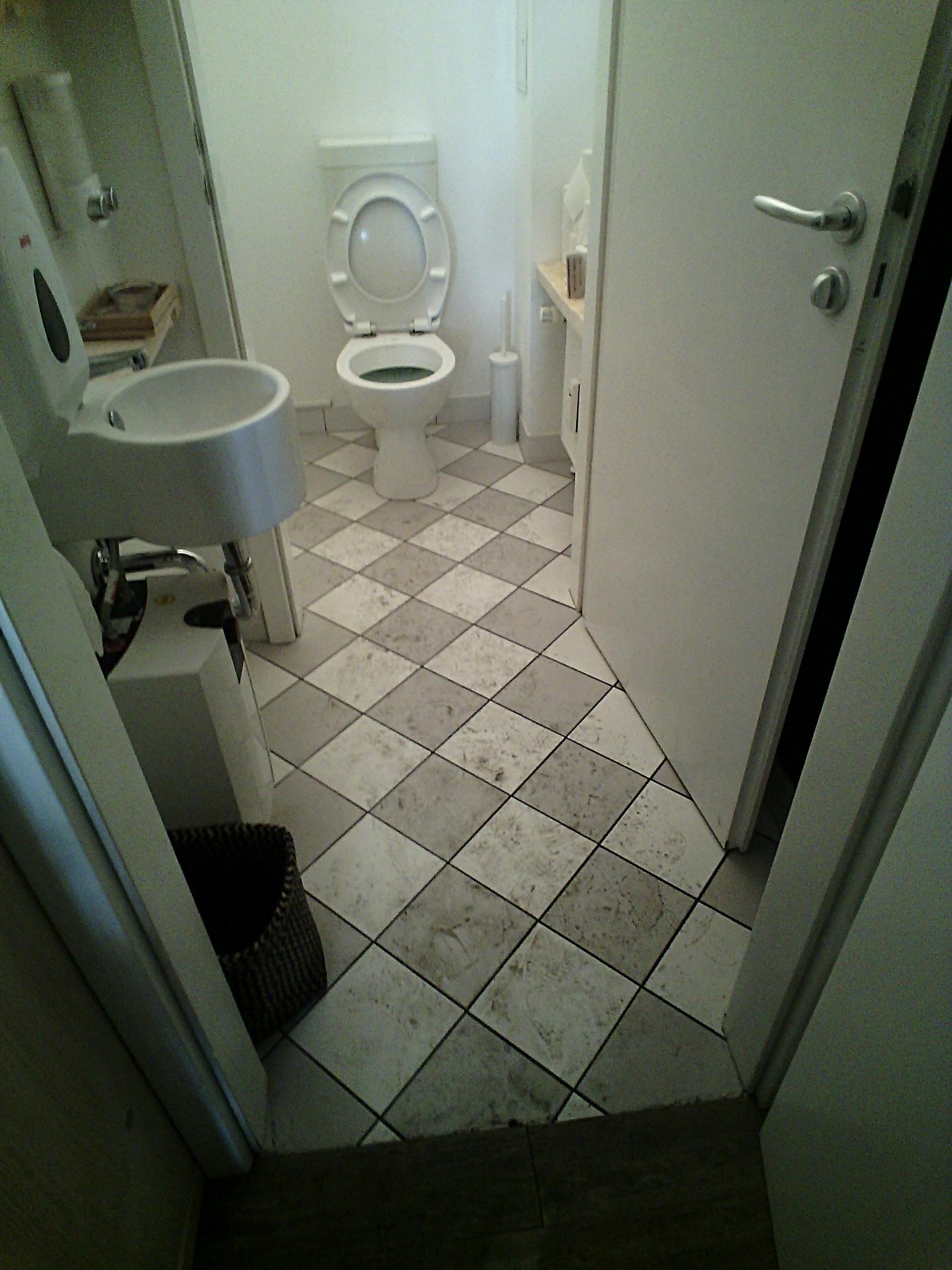 Toilette Carofliesen schmutzig